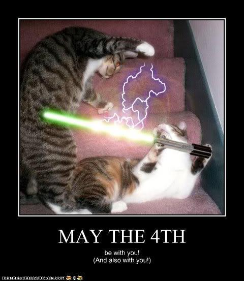May The Fourth Be With You Wookie: With Just A Hint Of Mayhem