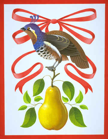 partridge-in-a-pear-tree-771236