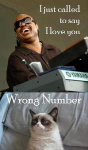 grumpy-cat-stevie-wonder-funny-pictures