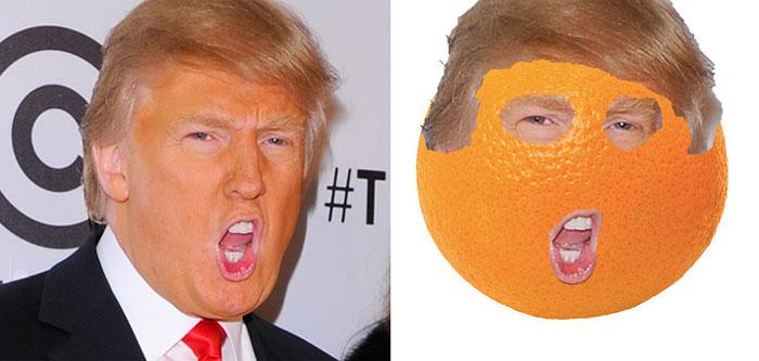 donald-trump-funny-look-alike-17__700