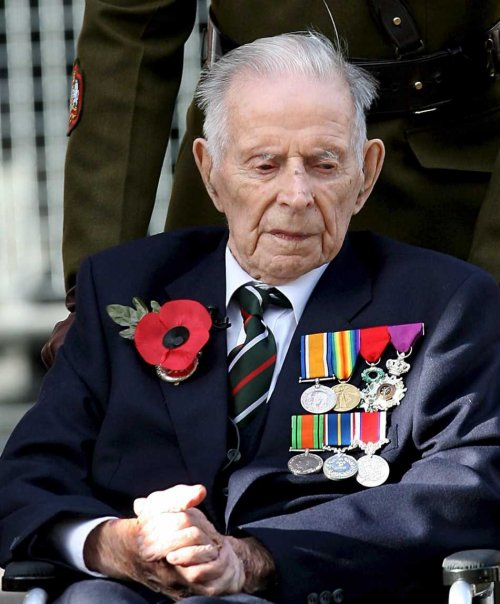 harrypatch2