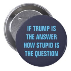 funny_2016_question_for_gop_donald_trump_voters_button-r53c194ba48524beeb95c325b8a8abd39_x7j1f_8byvr_324